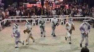 des gens déguisés en vaches dans une arène
